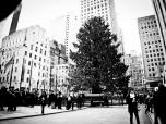 MIA_SIMO_NYC-4160
