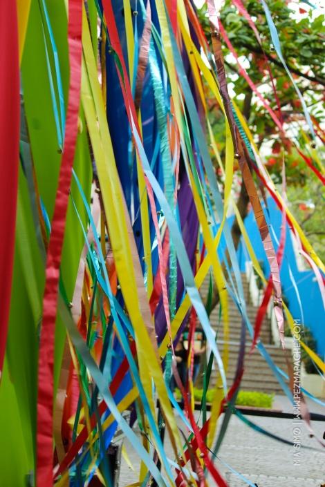 mia-simo-pezmapache-carnaval-2013-republica-dominicana-6836