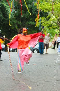 mia-simo-pezmapache-carnaval-2013-republica-dominicana-6905