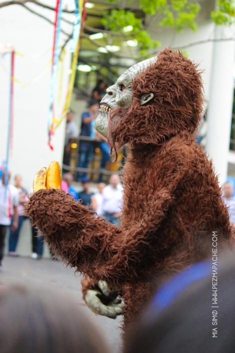 mia-simo-pezmapache-carnaval-2013-republica-dominicana-6957