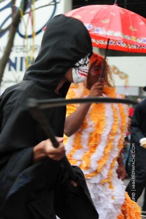 mia-simo-pezmapache-carnaval-2013-republica-dominicana-7008