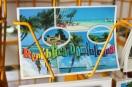 mia_simo_pezmapache_isla_saona_dominican-0923